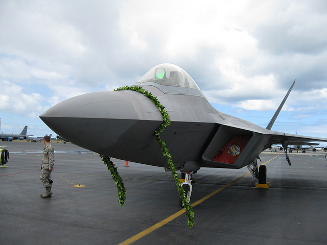 The f-22 fleet is grounded